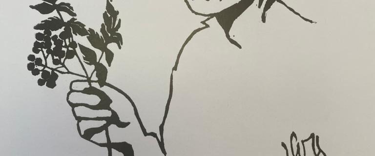 Каталог «Елабужская триеннале экслибриса» в фондах музея А.М. Горького и Ф.И. Шаляпина